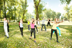 Gruppe von Personen, die Yoga im Park ausübt Lizenzfreies Stockfoto