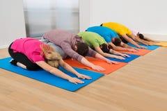 Gruppe von Personen, die Yoga tut Lizenzfreies Stockfoto