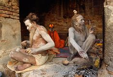 Gruppe von Sadhu Babas Stockfotografie