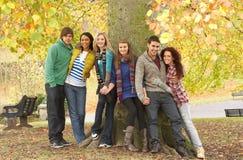 Gruppe von sechs Jugendfreunden, die am Baum sich lehnen Stockfotografie
