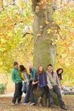 Gruppe von sechs Jugendfreunden, die am Baum sich lehnen Lizenzfreies Stockfoto