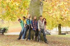 Gruppe von sechs Jugendfreunden, die am Baum sich lehnen Stockbild