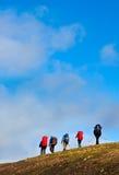 Gruppe Wanderer stockbild