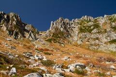 Gruppe Wanderer in den Bergen.  Zentrale Alpen, Japan. Stockfotografie