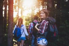 Gruppe wandernde Wanderer, die Waldtrekking anstreben Lizenzfreie Stockfotografie