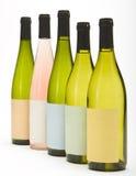 Gruppe Wein-Flaschen Stockbilder