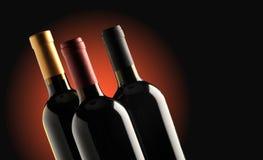 Gruppe Weinflaschen lizenzfreie stockfotografie