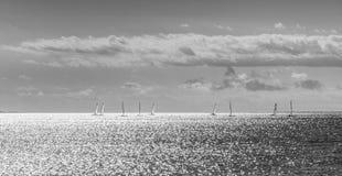 Gruppe Windsurfers, die über den Ozean in der blendend Sonne segeln Lizenzfreies Stockbild