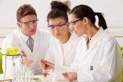 Gruppe Wissenschaftler, die Experiment im Labor durchführen lizenzfreies stockbild