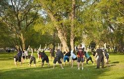Gruppenübungen in einem Park Lizenzfreie Stockbilder