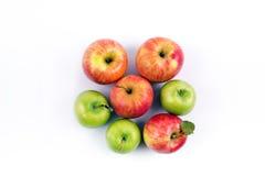 Gruppen av äpplet bär frukt på en vit bakgrund Fotografering för Bildbyråer