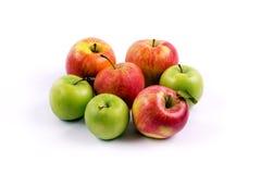Gruppen av äpplet bär frukt på en vit bakgrund Arkivfoto