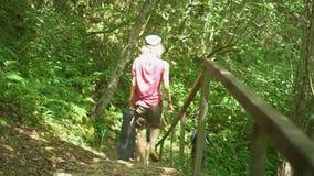 Gruppen av att fotvandra turister som ner kommer trappa i löst naturligt för djungel, parkerar i berg Fotvandra slinga för lopptu lager videofilmer