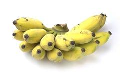 Gruppen av bananen är på den vita bakgrunden Fotografering för Bildbyråer