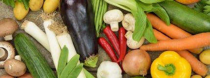 Gruppen av den nya grönsaken bär frukt som sund mat royaltyfri foto