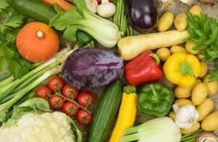 Gruppen av den nya grönsaken bär frukt som sund mat fotografering för bildbyråer