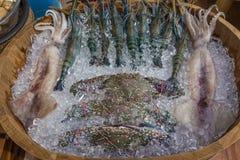 Gruppen av den nya kalla jumbon fångar krabbor räkor räka och tioarmad bläckfisk på is r Arkivfoton