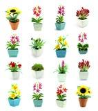 Gruppen av fejkar blommor i vasen Arkivfoto