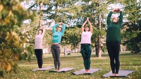 Gruppen av flickor är praktiserande yoga i stad parkerar utomhus på höstdag, står böjer kvinnor på mats och tillbaka arkivfilmer