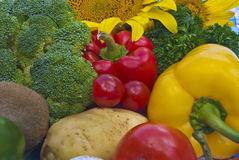 Gruppen av grönsaker Royaltyfri Bild