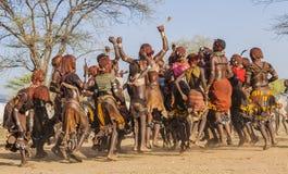 Gruppen av Hamar kvinnor dansar under tjurbanhoppningceremoni Turmi Omo dal, Etiopien Royaltyfri Fotografi