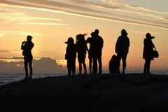 Gruppen av konturer som håller ögonen på solnedgången i läger, skäller, Cape Town, Sydafrika royaltyfria bilder