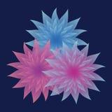 Gruppen av lila och blått blommar på mörk bakgrund Arkivfoton