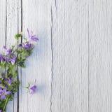 Gruppen av lilor blommar på vit målat trä Royaltyfria Bilder