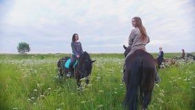 Gruppen av lyckliga ryttare för unga kvinnor på hästrygg står bland ängen lager videofilmer