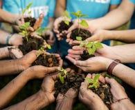 Gruppen av miljövårdfolk räcker att plantera i flyg- sikt Royaltyfri Bild