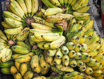 Gruppen av mognade organiska bananer på bönder marknadsför Royaltyfria Foton