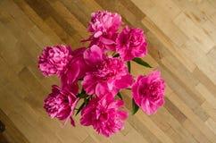 Gruppen av pioner blommar på golvet Royaltyfri Fotografi