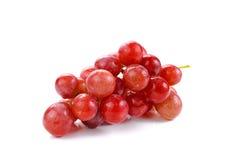 Gruppen av röda druvor som är ny med, bevattnar tappar På white royaltyfria bilder