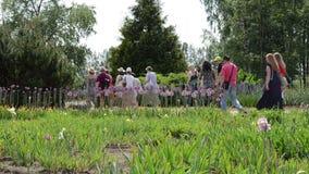 Gruppen av turistfolk går i botanisk trädgård arkivfilmer