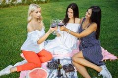 Gruppen av unga och härliga kvinnor dricker vin i parkera royaltyfria bilder