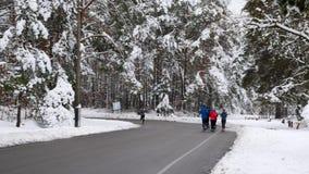 Gruppen av unga passformlöpare kör i en vinter parkerar Morgonspringövningar i snöig parkerar lager videofilmer