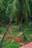 Gruppen av unga sydostliga asiatiska buddistiska munkar går i tempel parkerar Royaltyfria Bilder