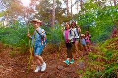 Gruppen av ungar går i skogen under att fotvandra arkivbild
