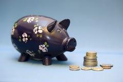 gruppen coins piggy Royaltyfri Foto