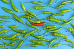 Gruppen der roten und grünen Paprikas Stockfotos