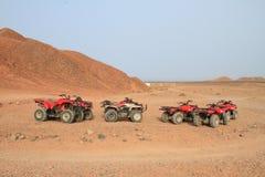 Gruppen in der Wüste stockfoto