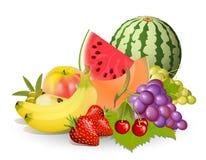 Gruppen Früchte stock abbildung