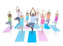Gruppen-gesunde Leute-Eignung, die Entspannungs-Konzept ausübt Lizenzfreie Stockfotografie