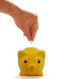 gruppen isolerade piggy besparingar Royaltyfri Foto