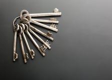 gruppen keys white Royaltyfri Foto