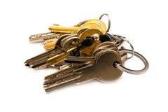 gruppen keys white Royaltyfria Bilder