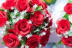 gruppen steg Blomma och blom- begrepp Valentindagcelebra royaltyfri fotografi