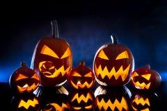 Gruppenkürbise für Halloween Stockfoto