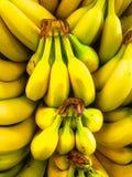Grupper av bananer Royaltyfria Foton