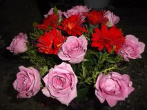 Grupper av blommor Arkivbild